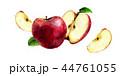 くだもの フルーツ 実のイラスト 44761055
