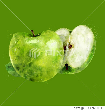 Green Apple on green background. Watercolor illustration 44761061