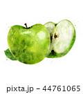 くだもの フルーツ 実のイラスト 44761065