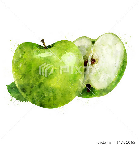 Green Apple on white background. Watercolor illustration 44761065