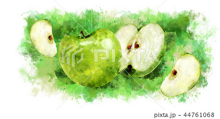 Green Apple on white background. Watercolor illustration 44761068