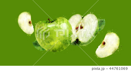 Green Apple on green background. Watercolor illustration 44761069