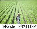 親子 おんぶ 畑の写真 44763546