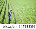 親子 おんぶ 畑の写真 44763564