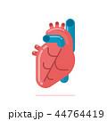 ハート ハートマーク 心臓のイラスト 44764419