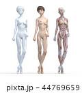 筋肉 解剖 女性のイラスト 44769659