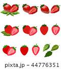 くだもの フルーツ 実のイラスト 44776351