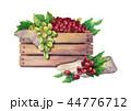 ぶどう ブドウ 葡萄のイラスト 44776712