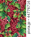 ぶどう ブドウ 葡萄のイラスト 44776716