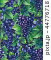 ぶどう ブドウ 葡萄のイラスト 44776718