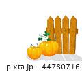 かぼちゃ カボチャ 南瓜のイラスト 44780716