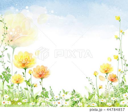 イラスト 自然 植物 44784857