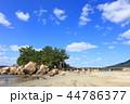 箱島神社 箱島 神社の写真 44786377