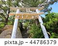 箱島神社 箱島 神社の写真 44786379