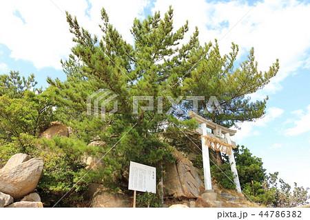 箱島神社 海に浮かぶパワースポット神社(福岡県糸島市) 44786382