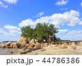箱島神社 箱島 神社の写真 44786386