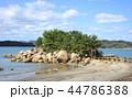 箱島神社 箱島 神社の写真 44786388