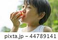 夏休みの男の子 44789141