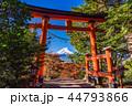 富士山 新倉山浅間公園 紅葉の写真 44793866