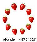 苺 フルーツ 果物のイラスト 44794025
