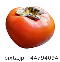 デザイン 柄 野望 44794094