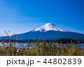 富士山 河口湖 風景の写真 44802839