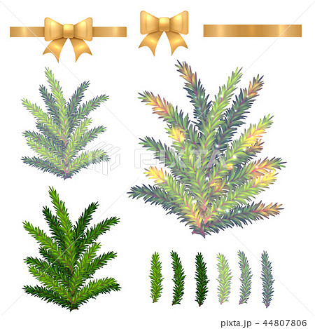 vector christmas fir tree isolated on white 44807806