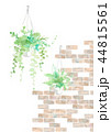 観葉植物とタイル、ブラウン 44815561