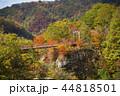 紅葉 秋 風景の写真 44818501