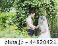 ウェディング ウエディング 結婚の写真 44820421