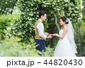 ウェディング ウエディング 結婚の写真 44820430