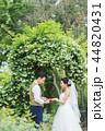 ウェディング ウエディング 結婚の写真 44820431