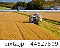 コンバイン 人物 日本の写真 44827509