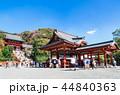 鶴岡八幡宮 本宮 舞殿の写真 44840363