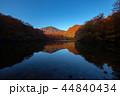秋の八甲田 赤沼(夜明け) 44840434