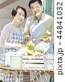 夫婦 韓国人 韓国の人の写真 44841032