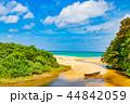 平久保 ビーチ 海の写真 44842059