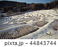 大山千枚田の雪景色 44843744