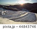 大山千枚田の雪景色 44843746