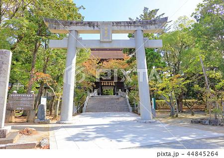 香椎宮(鳥居)福岡県福岡市東区 44845264