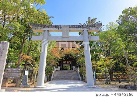 香椎宮(鳥居)福岡県福岡市東区 44845266