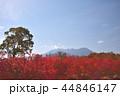 長野県、開田高原からの御嶽山 44846147