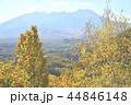 長野県、開田高原・九蔵峠からの御嶽山 44846148