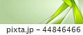 緑色 会社 企業のイラスト 44846466