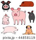 ベクター 動物 豚のイラスト 44858119