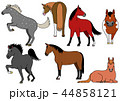 ベクター 動物 馬のイラスト 44858121
