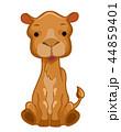 らくだ ラクダ 駱駝のイラスト 44859401