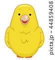 鳥 カナリア イラストのイラスト 44859408