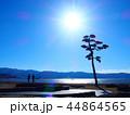 陸戦高田の海岸(09) 44864565