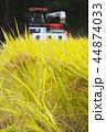 稲の獲り入れ 44874033